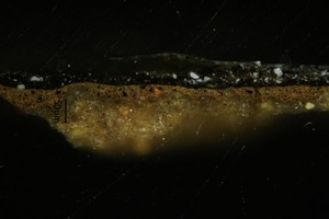 light microscopy