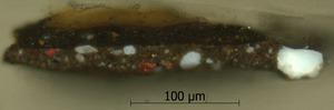 lichtmicroscopie
