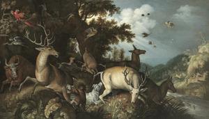 Honden vallen herten aan in een bosrijk rivierlandschap