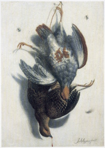 Trompe l'oeil met twee dode vogels