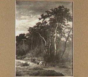 Kennemer landschap