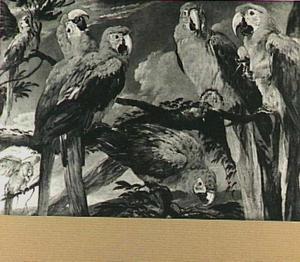 Zeven papegaaien in een boom