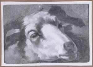 Kop van een schaap, naar rechts