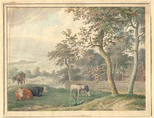 Duinlandschap met koeien