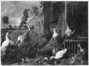 Hoenderhof met een pauw, hoenderen, eenden en kuikens in de achtergrond een knecht met voer