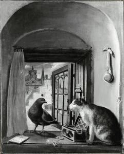 Duif en kat  in een vesnternis