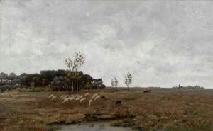 Heide bij Vries