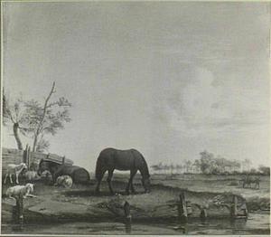 Weide met paarden en schapen