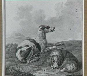 Twee rustende honden in een heuvellandschap