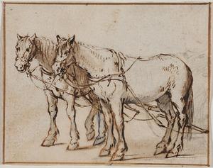 Twee ingespannen paarden