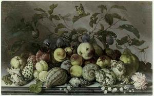 Stilleven van vruchten, schelpen en bloemen, met insecten en een hagedis, op een stenen tafel