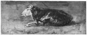 Liggende koe en profil