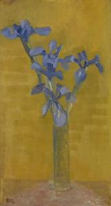 Blue irises against an orange background