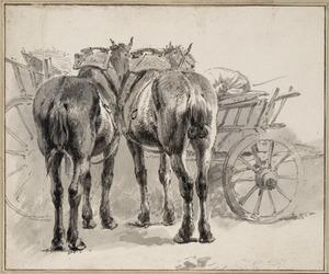 Twee paarden voor een wagen, van achteren gezien