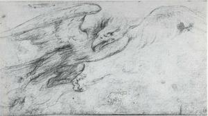 Studie van een adelaar met bliksem