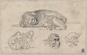 Studieblad met apen incl. slapende chimpansee