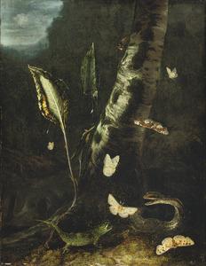 Bosstilleven met hagedis, slang en vlinders