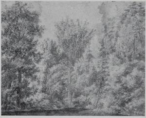 Boslandschap met beek nabij Nijmegen