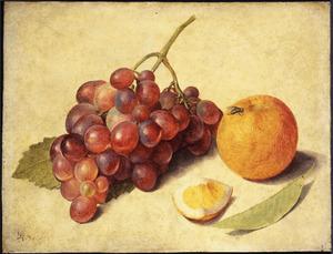Studie van druiven en sinaasappel