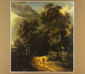 Boslandschap met reiziger en zijn hond