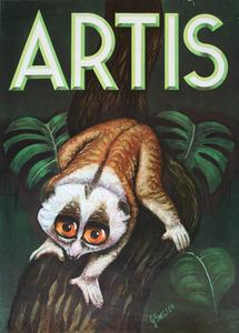 Artis-Affiche: Lori op een tak