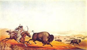 Op bizonjacht