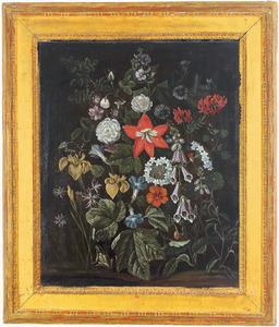 Bloemen met een kikker op bosgrond