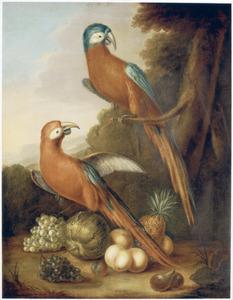 Twee papegaaien en enige vruchten