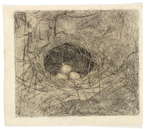 Nestje met drie eieren