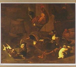 Een haan, duiven, eenden en een konijn in een boerenschuur
