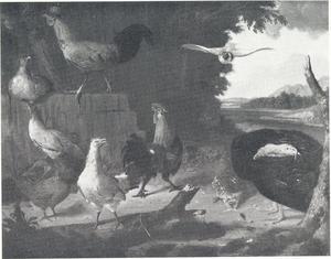 Kippen, een kalkoen en een duif in een landschap met ruïnes