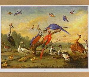 Papegaaien en watervogels in een weids landschap