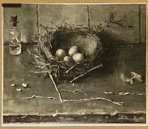 Vogelnestje met eieren