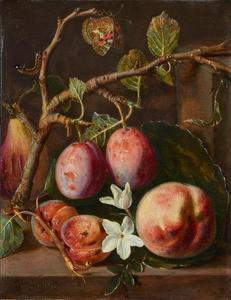 Stilleven van een tak met pruimen, abrikozen en bloesem