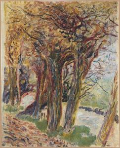 Bomen langs de waterkant