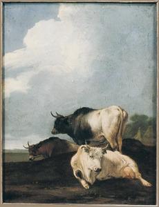 Rustend vee koeien in een landschap