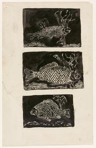 Studies van een zeelt, een (boeren-)karper en een kros- of steenkarper