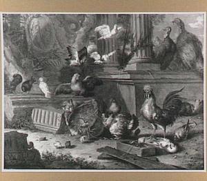 Kat en pluimvee bij een klassieke ruine