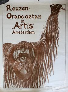 Artis-Affiche: 'Reuzen Orang-oetan in Artis'