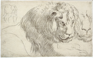 Studies van leeuwen