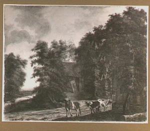 Boomrijk landschap met koeien voor een boerderij