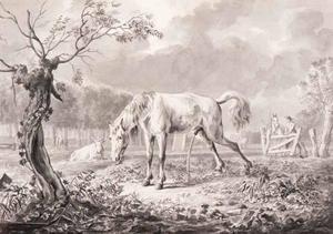 Waterend paard