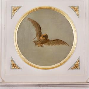 Adelaar in de vleugel geraakt door een pijl