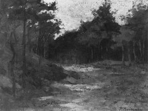 Wood near Driebergen