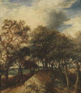 Duinlandschap met bomen