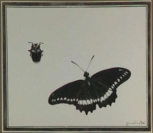Een vlinder en een kever