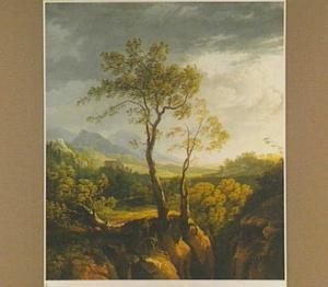 Italiaans landschap met bomen op een rotswand