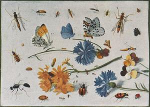 Studie van insecten en planten, waaronder een driekleurig viooltje, op een witte ondergrond