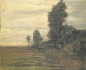 Landschap bij Uden