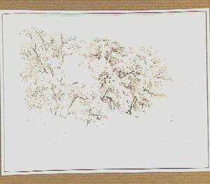 Loofbomen in de omgeving van Tivoli